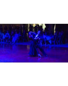 The Universal Cavalcade 2016 - Domen Krapez & Natasha Karabey